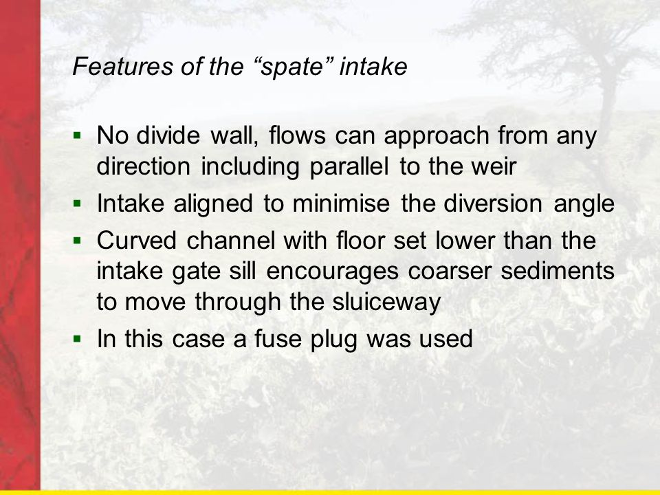 Features of the spate intake