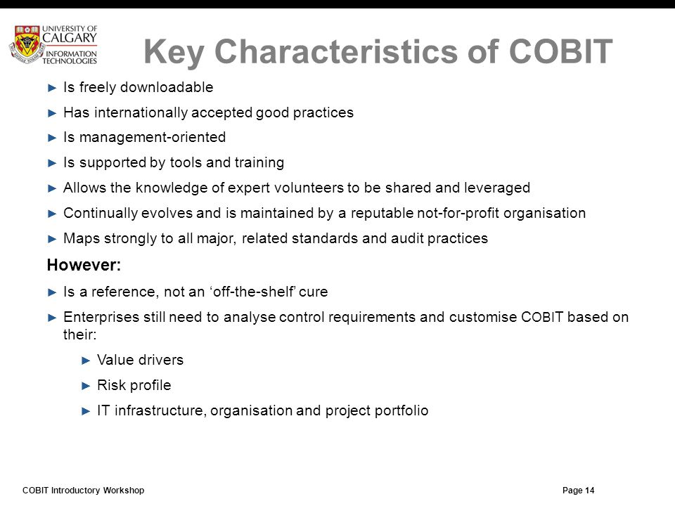 Key Characteristics of COBIT