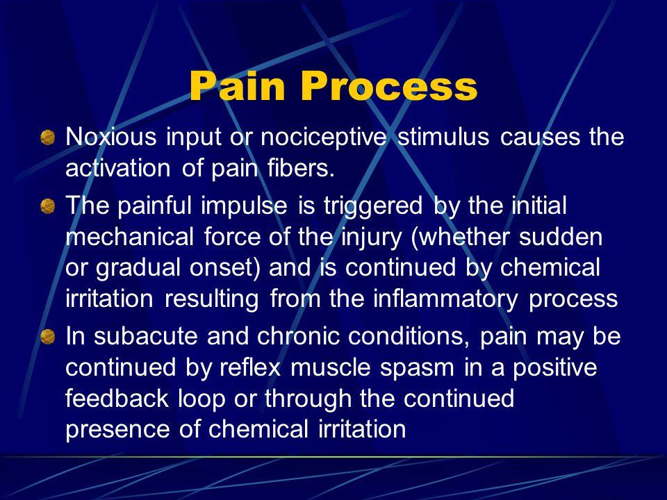 Pain Process Noxious input or nociceptive stimulus causes the activation of pain fibers.