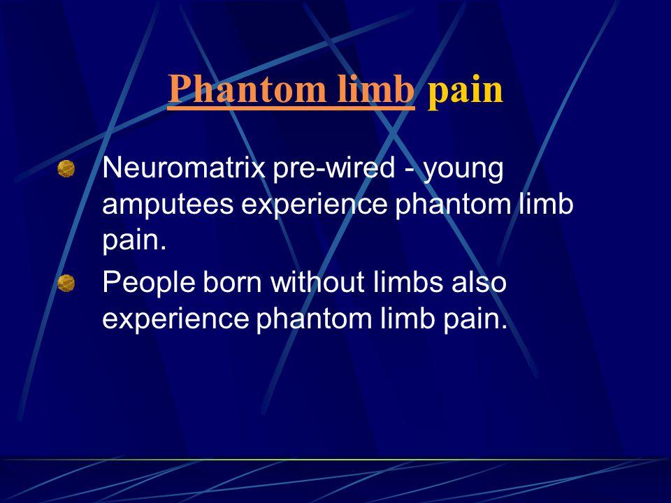 Phantom limb pain Neuromatrix pre-wired - young amputees experience phantom limb pain.
