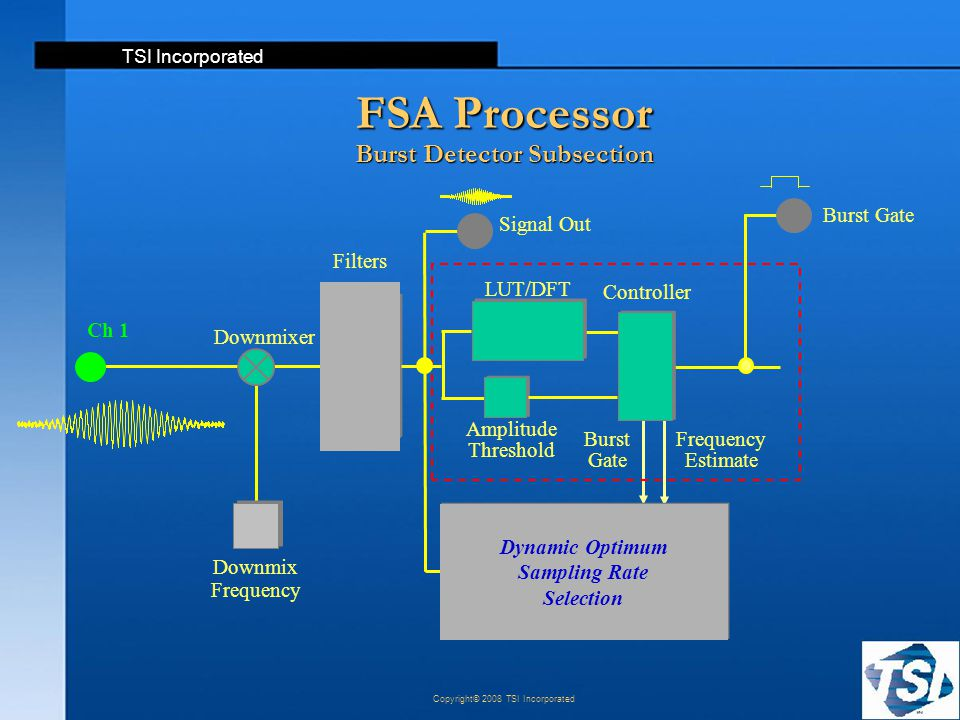 FSA Processor Burst Detector Subsection
