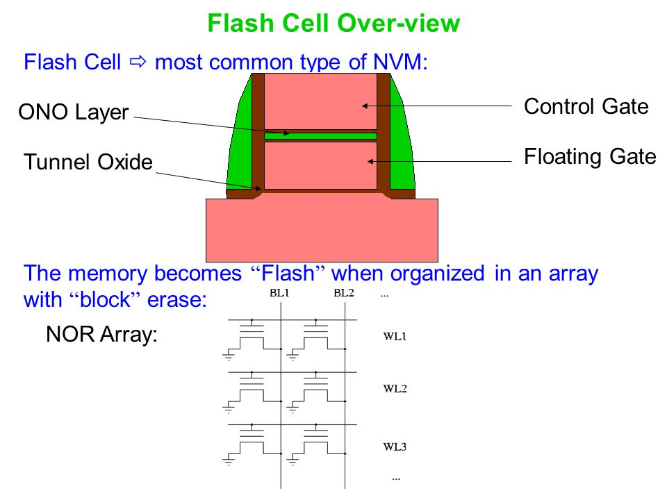 Flash Cell Over-view Flash Cell  most common type of NVM: