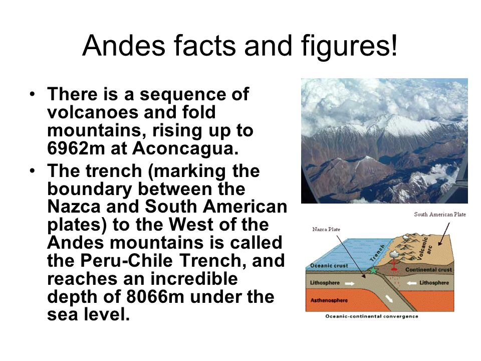 Andes facts and figures!