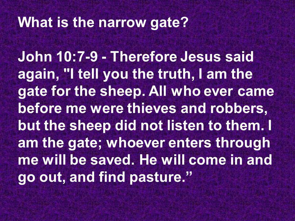 What is the narrow gate.