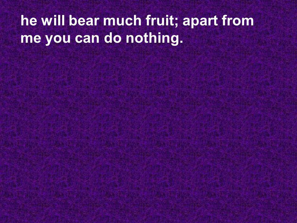he will bear much fruit; apart from me you can do nothing.