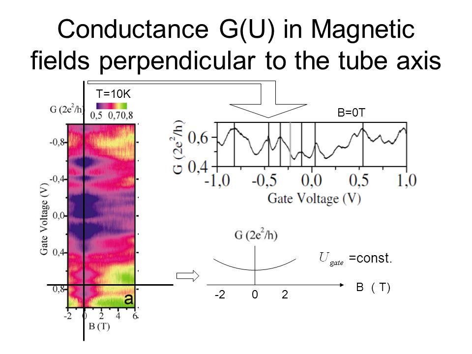 Conductance G(U) in Magnetic fields perpendicular to the tube axis
