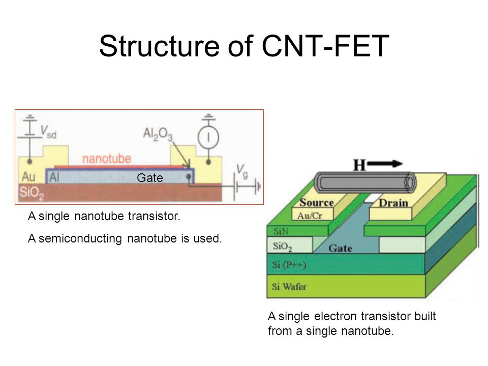 Structure of CNT-FET Gate A single nanotube transistor.
