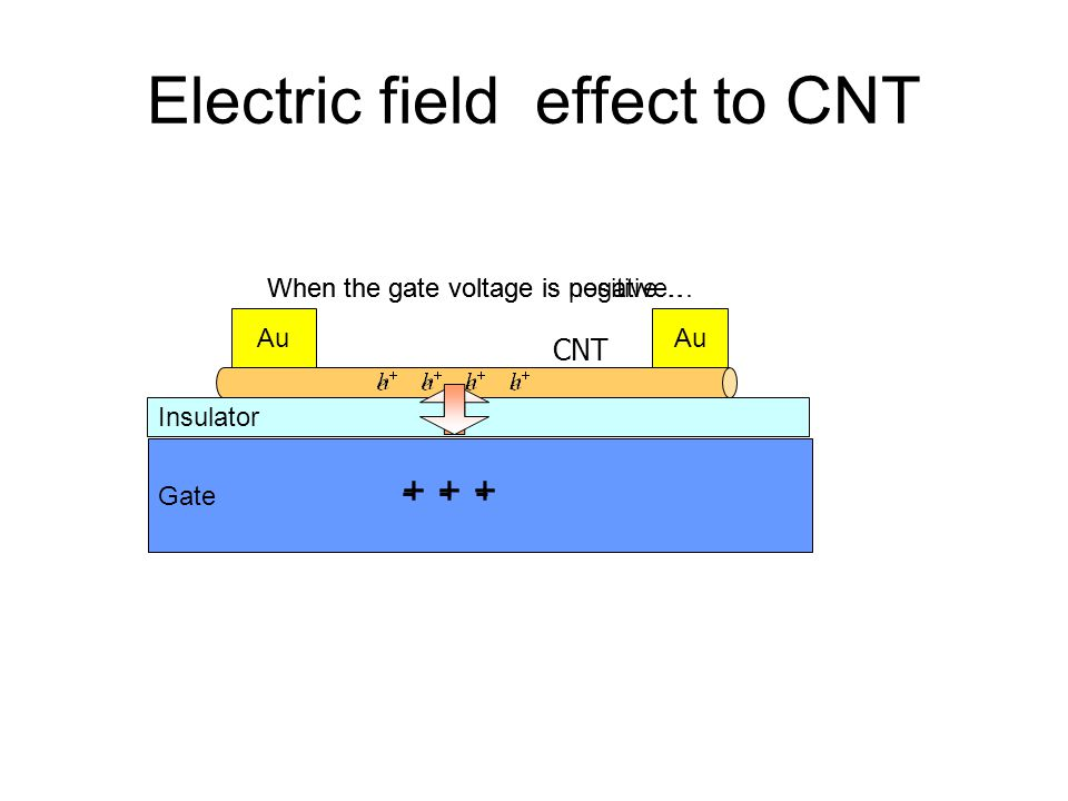 Electric field effect to CNT