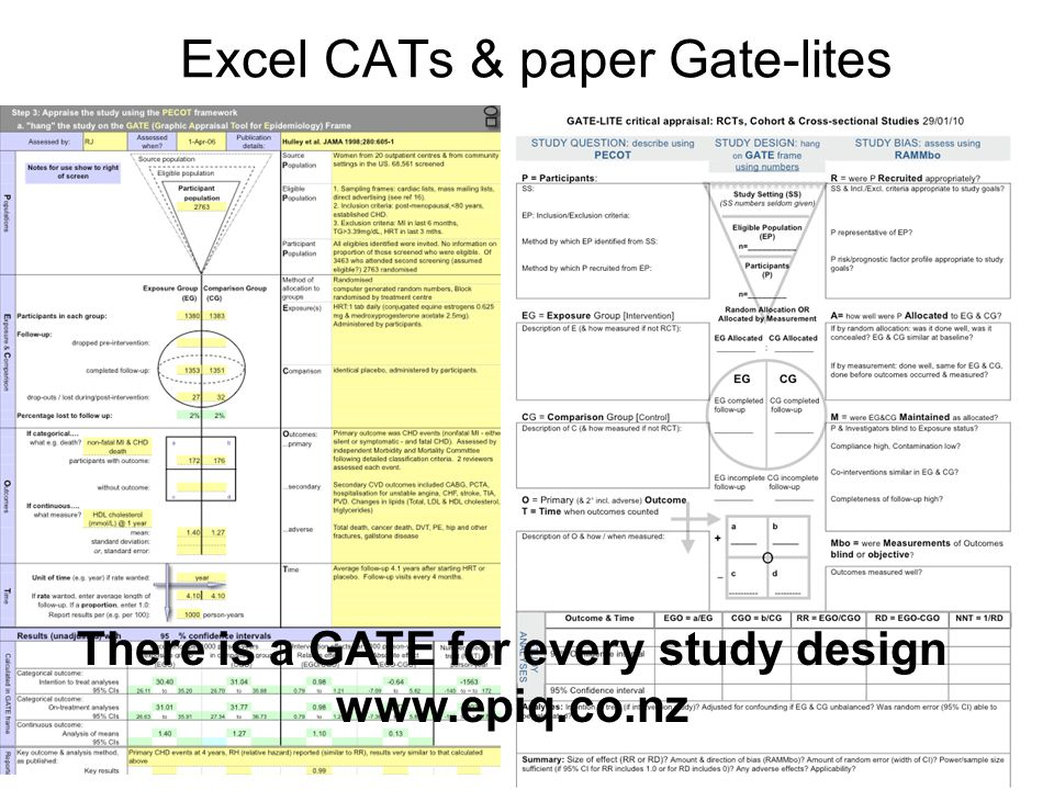 Excel CATs & paper Gate-lites
