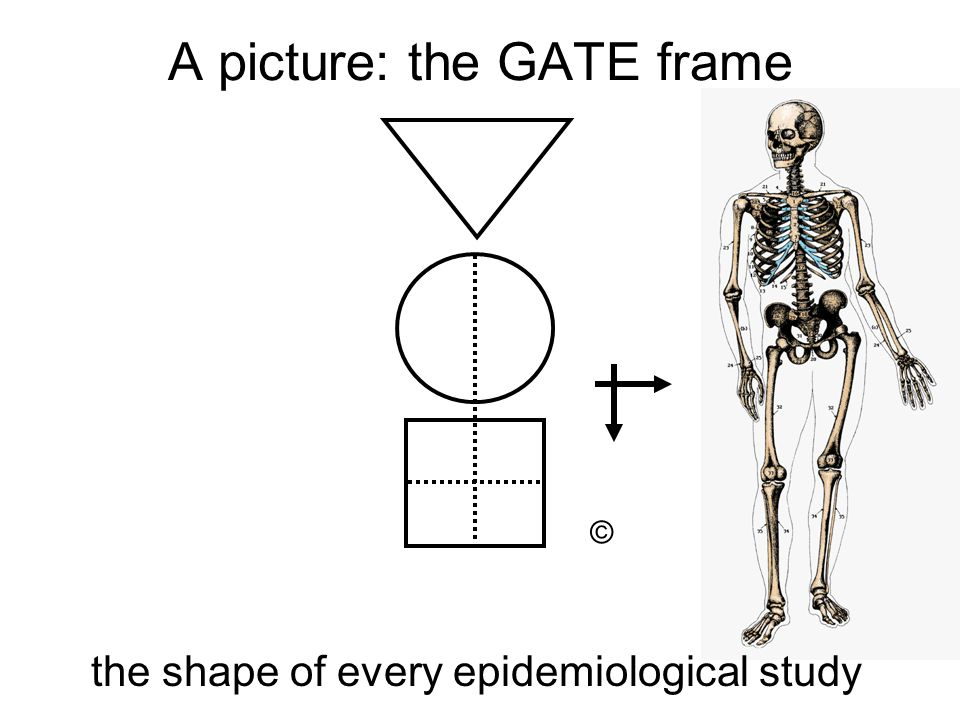 A picture: the GATE frame