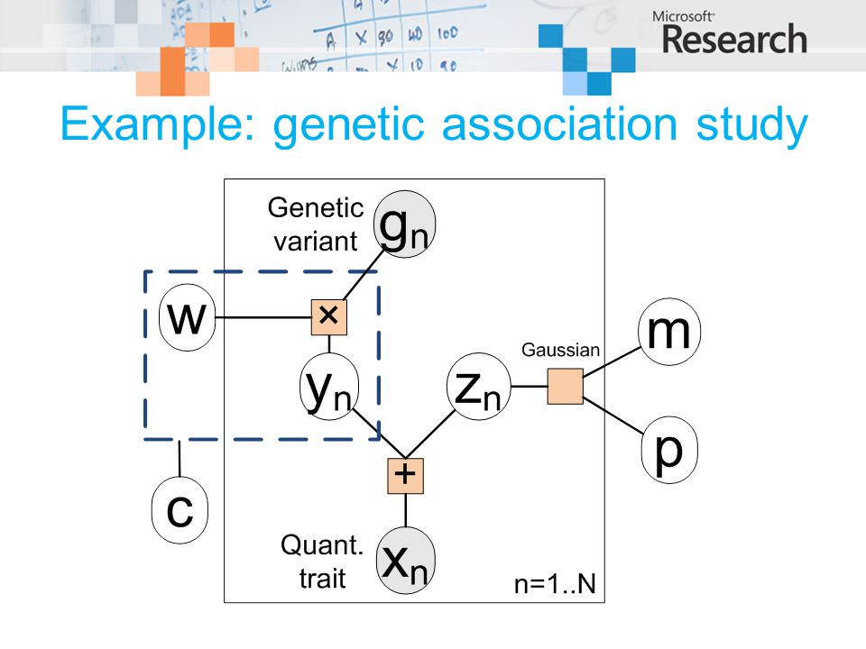 Example: genetic association study