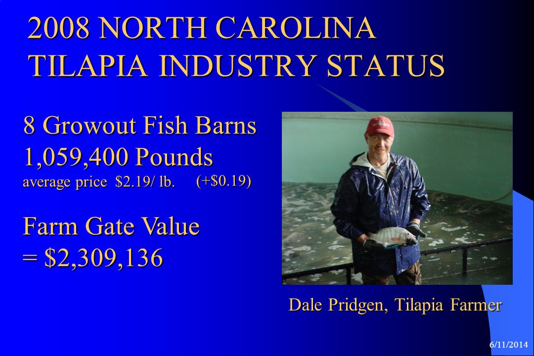 2008 NORTH CAROLINA TILAPIA INDUSTRY STATUS