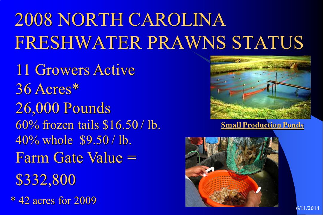 2008 NORTH CAROLINA FRESHWATER PRAWNS STATUS
