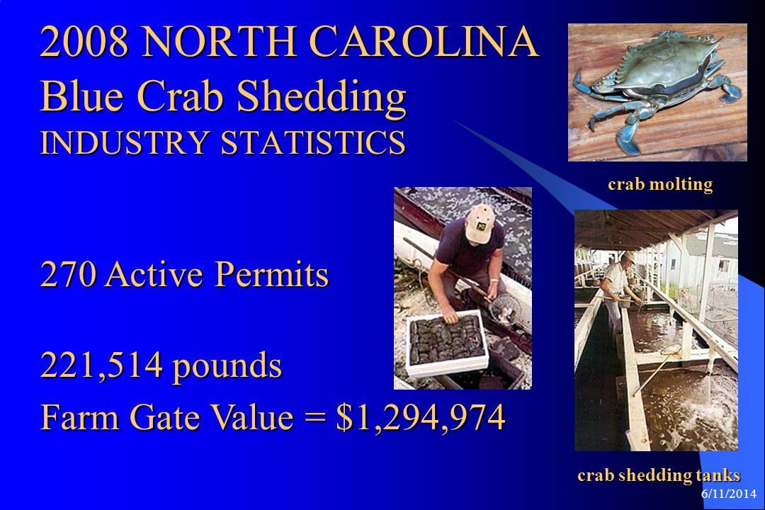 2008 NORTH CAROLINA Blue Crab Shedding INDUSTRY STATISTICS