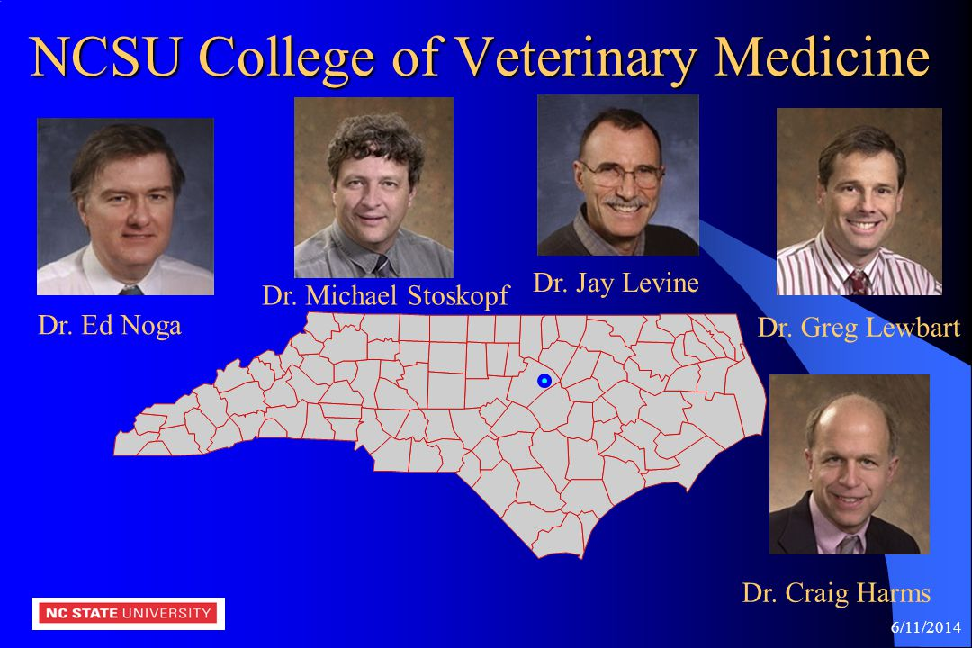 NCSU College of Veterinary Medicine