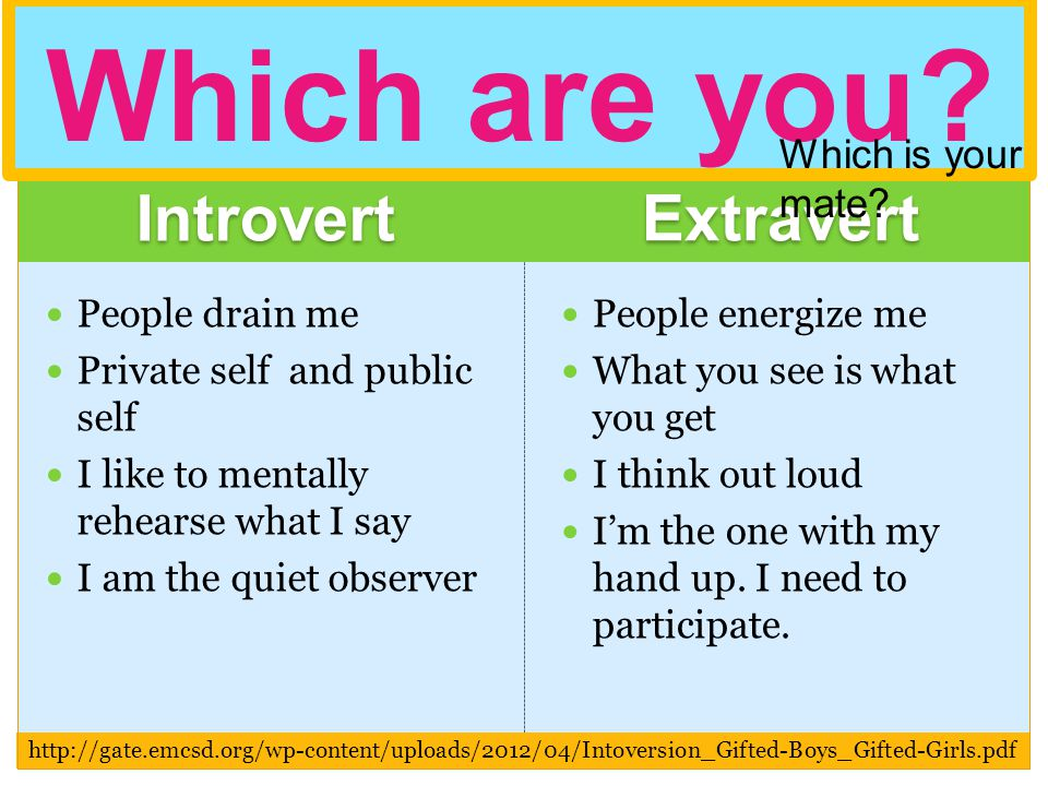 Introvert Extravert Which are you Which is your mate People drain me