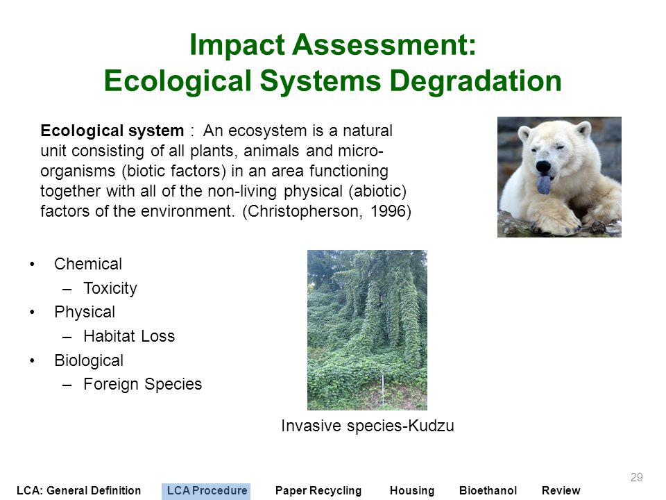 Impact Assessment: Ecological Systems Degradation