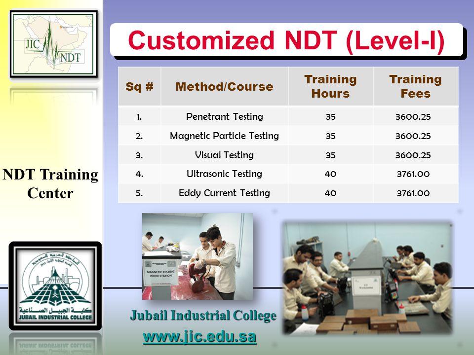 Customized NDT (Level-I)