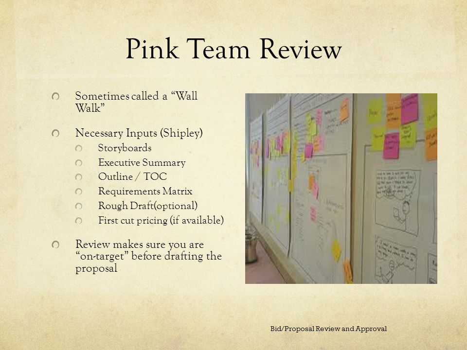 Pink Team Review Sometimes called a Wall Walk
