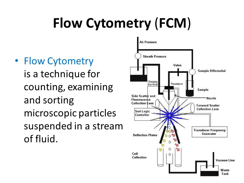 Flow Cytometry (FCM) Flow Cytometry is a technique for counting, examining and sorting microscopic particles suspended in a stream of fluid.