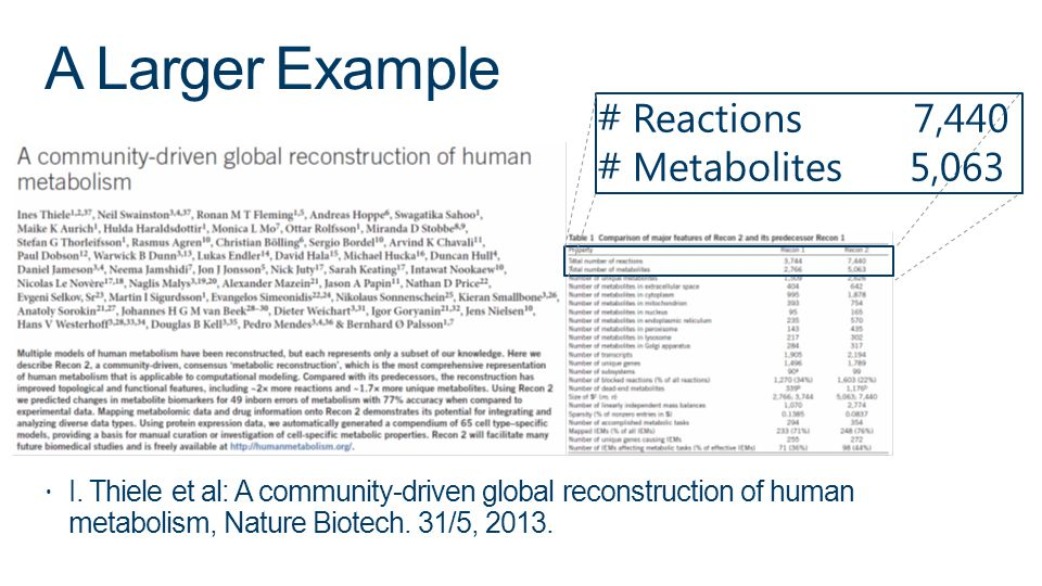 A Larger Example # Reactions 7,440 # Metabolites 5,063