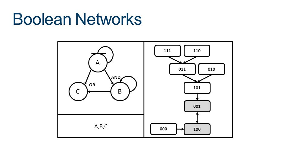 Boolean Networks A C B AND OR 000 100 001 101 011 010 111 110 A,B,C