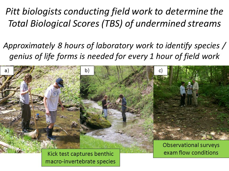 Pitt biologists conducting field work to determine the Total Biological Scores (TBS) of undermined streams Approximately 8 hours of laboratory work to identify species / genius of life forms is needed for every 1 hour of field work