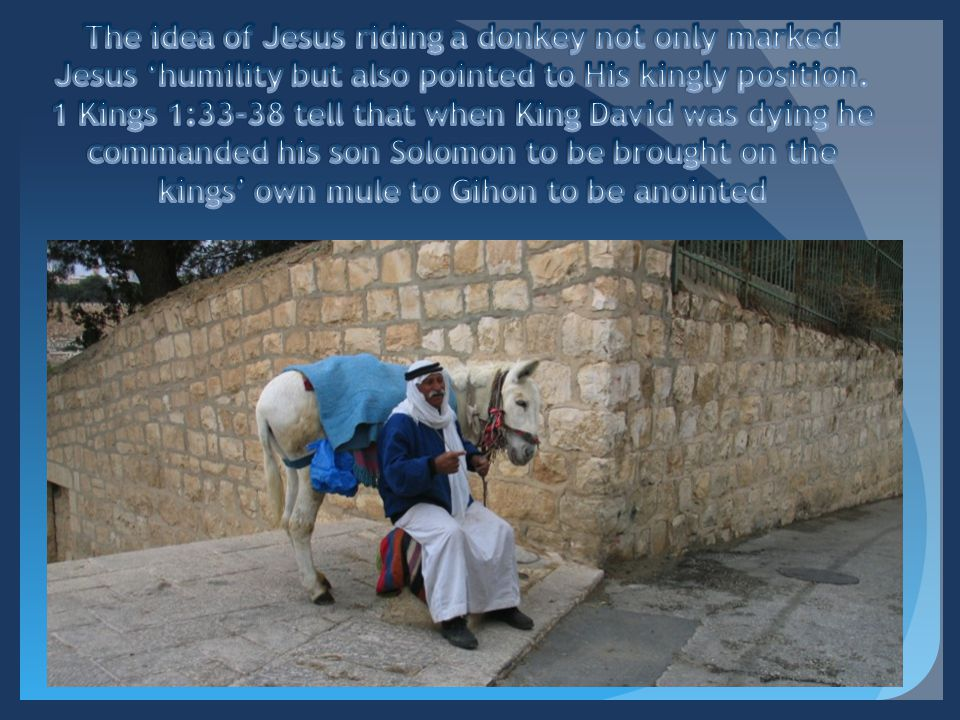 The idea of Jesus riding a donkey not only marked Jesus 'humility but also pointed to His kingly position.