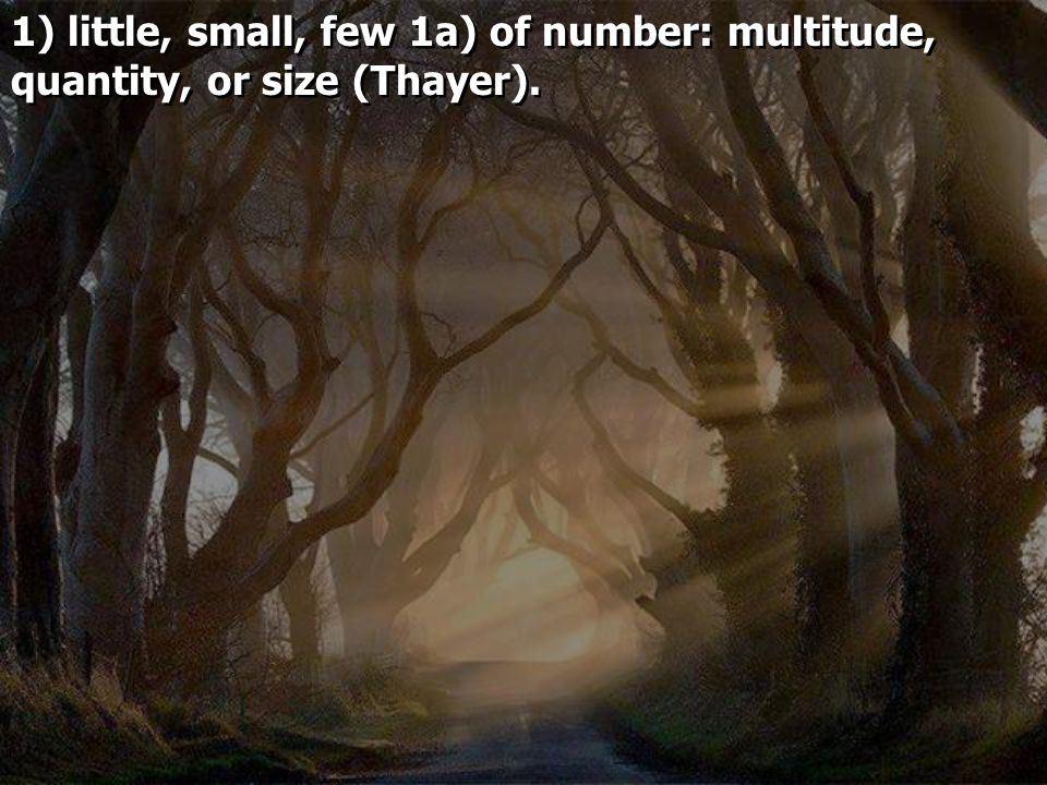 1) little, small, few 1a) of number: multitude, quantity, or size (Thayer).
