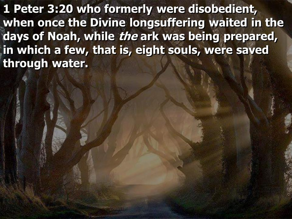 1 Peter 3:20 who formerly were disobedient, when once the Divine longsuffering waited in the days of Noah, while the ark was being prepared, in which a few, that is, eight souls, were saved through water.