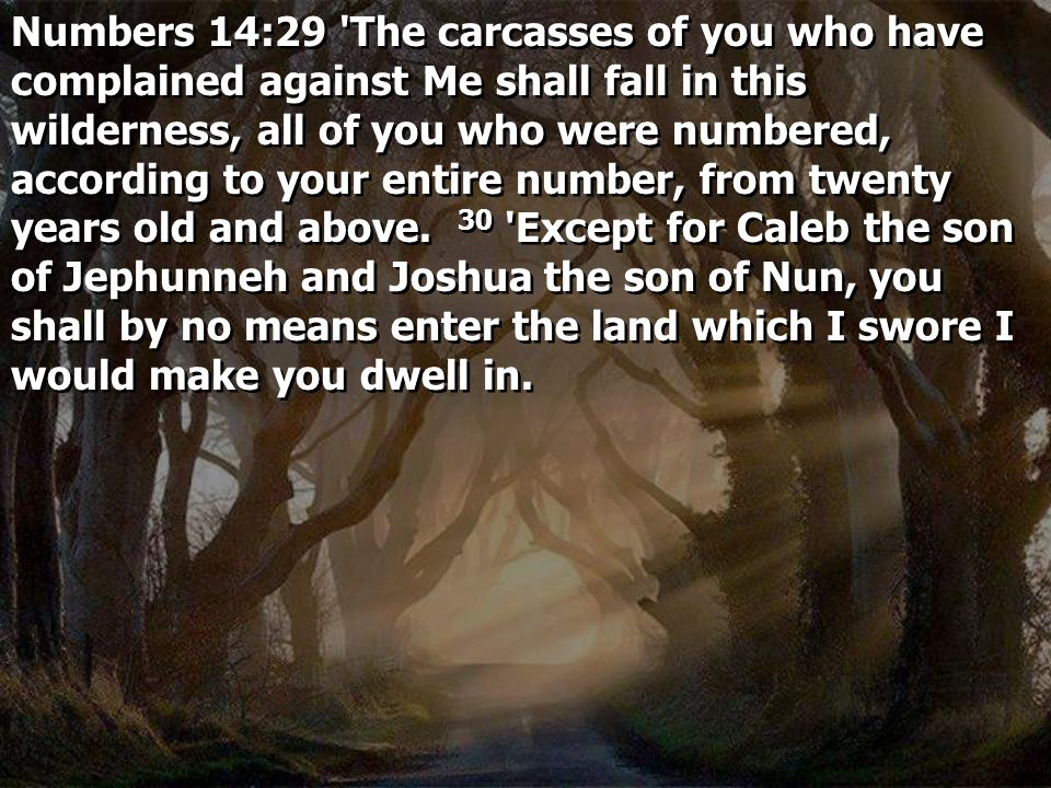 Numbers 14:29 The carcasses of you who have complained against Me shall fall in this wilderness, all of you who were numbered, according to your entire number, from twenty years old and above. 30 Except for Caleb the son of Jephunneh and Joshua the son of Nun, you shall by no means enter the land which I swore I would make you dwell in.