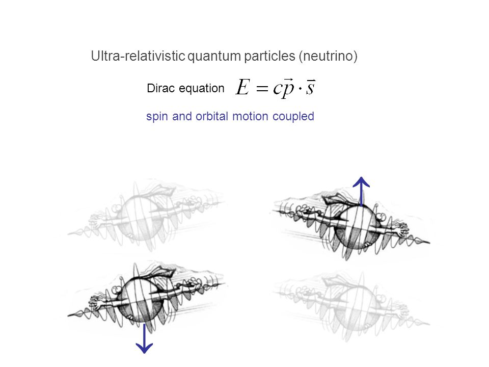   Ultra-relativistic quantum particles (neutrino) Dirac equation