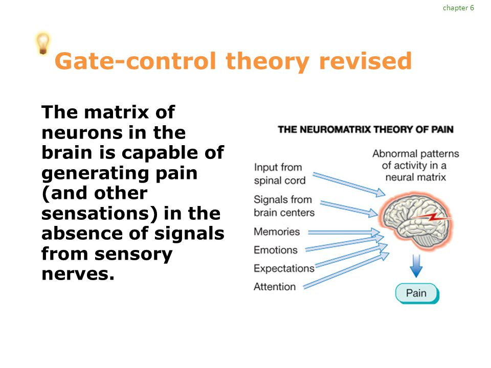 Gate-control theory revised