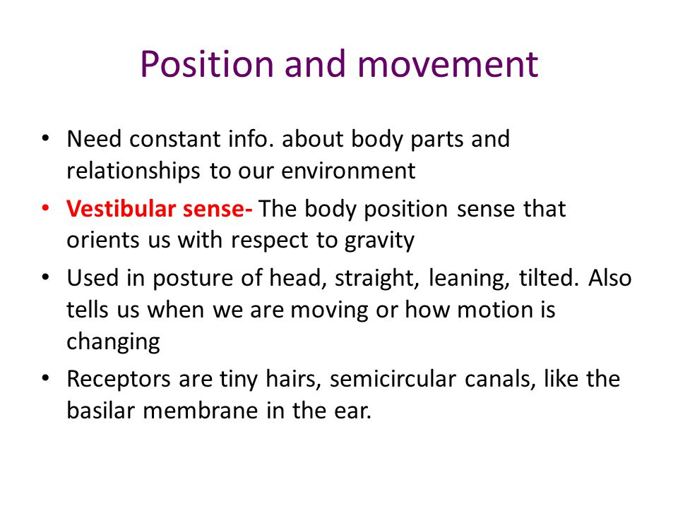 Position and movement Need constant info. about body parts and relationships to our environment.
