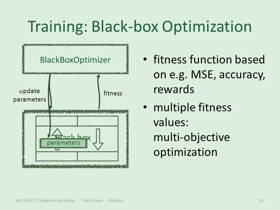 Training: Black-box Optimization