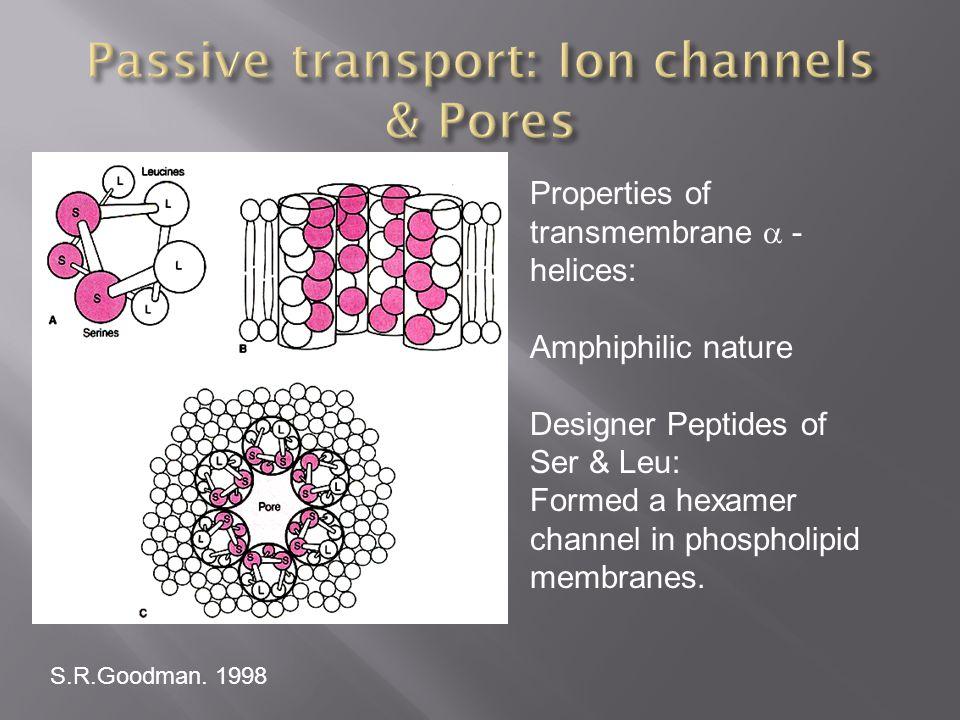 Passive transport: Ion channels & Pores
