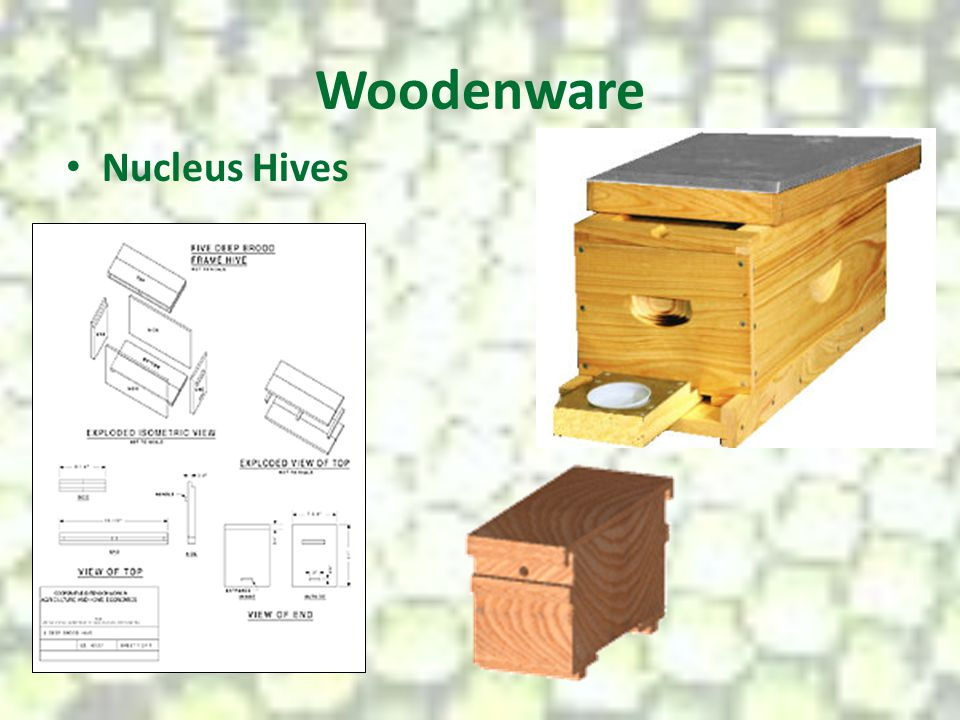 Woodenware Nucleus Hives