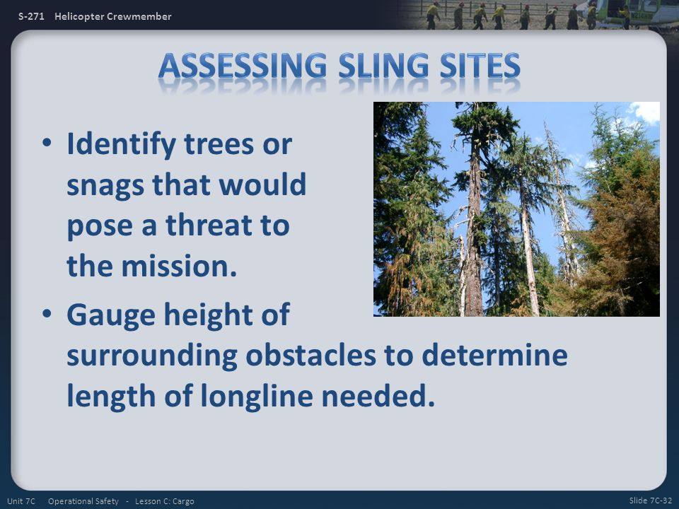 Assessing Sling Sites Identify trees or snags that would pose a threat to the mission.