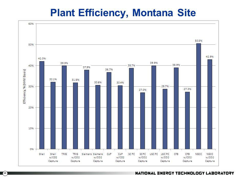Plant Efficiency, Montana Site