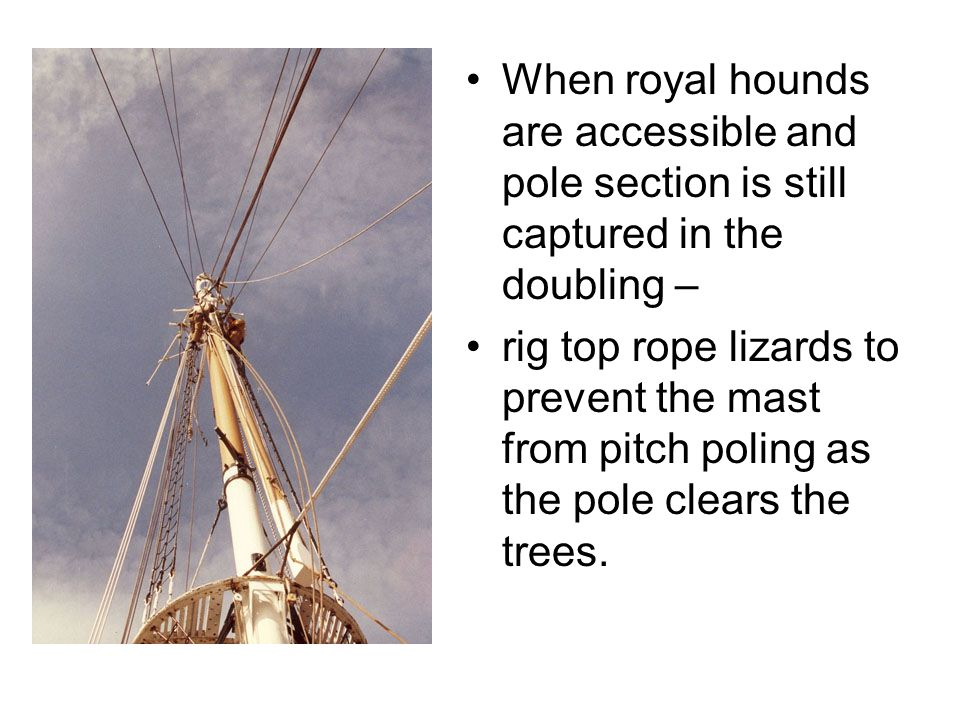 When royal hounds are accessible and pole section is still captured in the doubling –