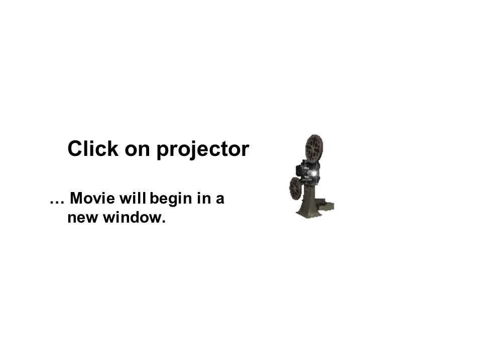 Click on projector … Movie will begin in a new window.