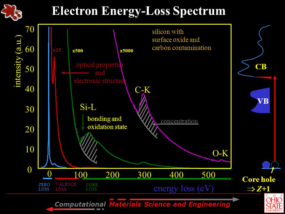 Electron Energy-Loss Spectrum