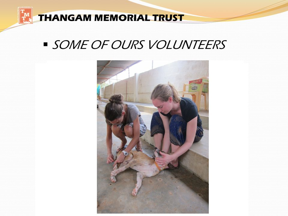 SOME OF OURS VOLUNTEERS