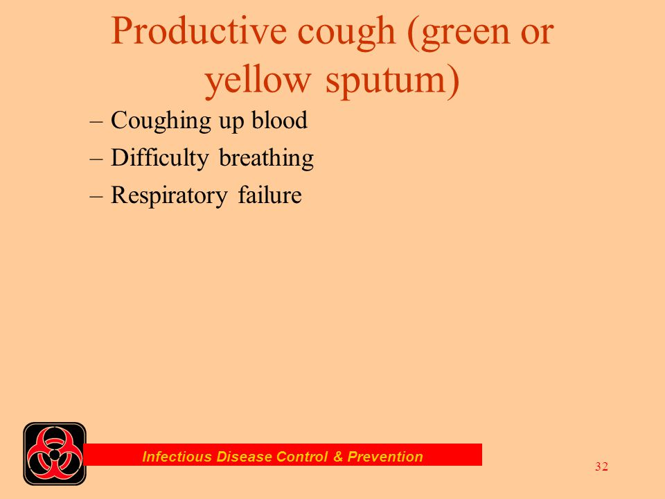 Productive cough (green or yellow sputum)