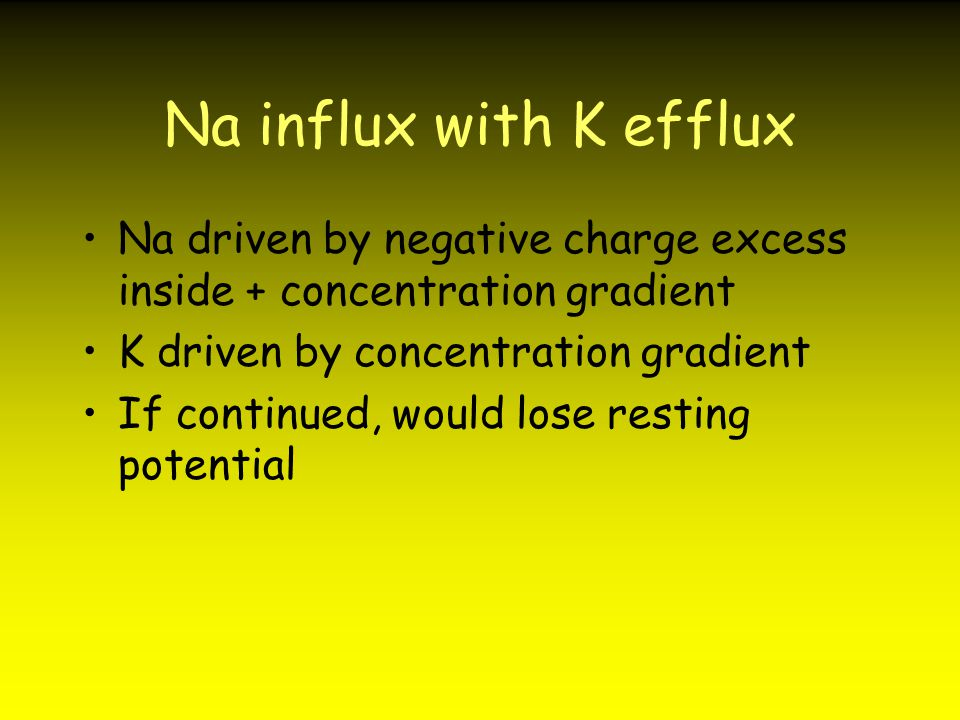 Na influx with K efflux Na driven by negative charge excess inside + concentration gradient. K driven by concentration gradient.