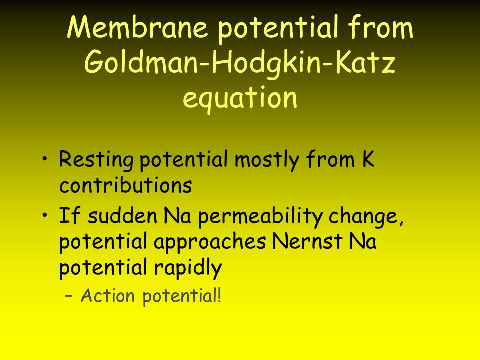 Membrane potential from Goldman-Hodgkin-Katz equation