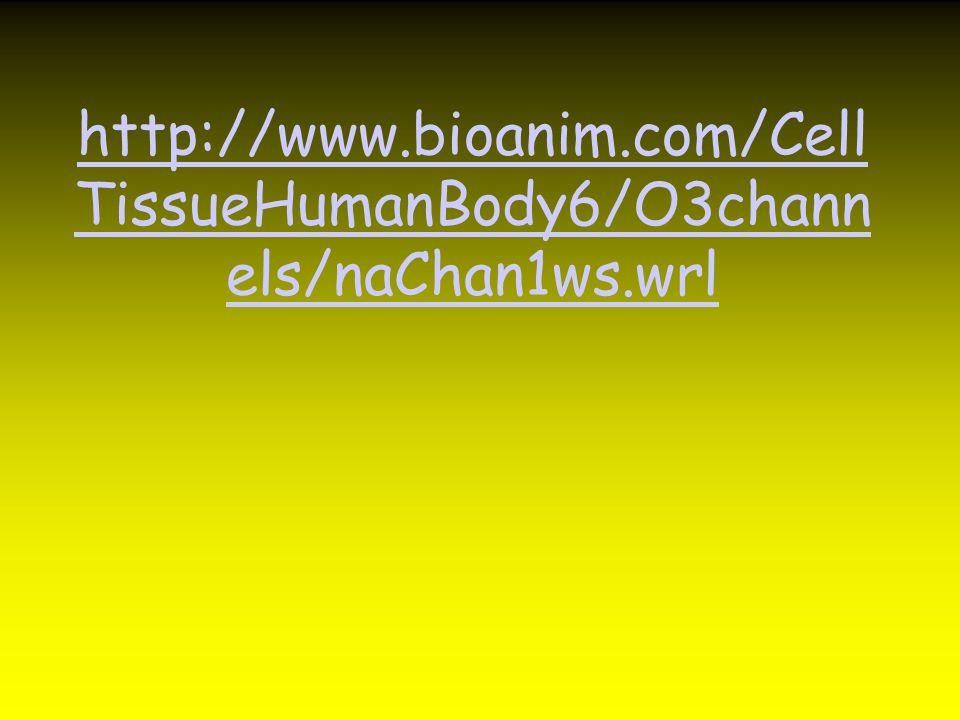 http://www.bioanim.com/CellTissueHumanBody6/O3channels/naChan1ws.wrl