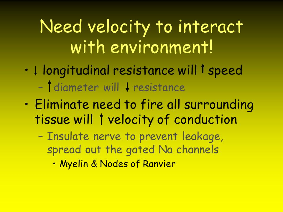 Need velocity to interact with environment!