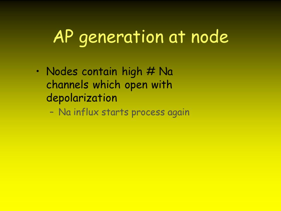 AP generation at node Nodes contain high # Na channels which open with depolarization.