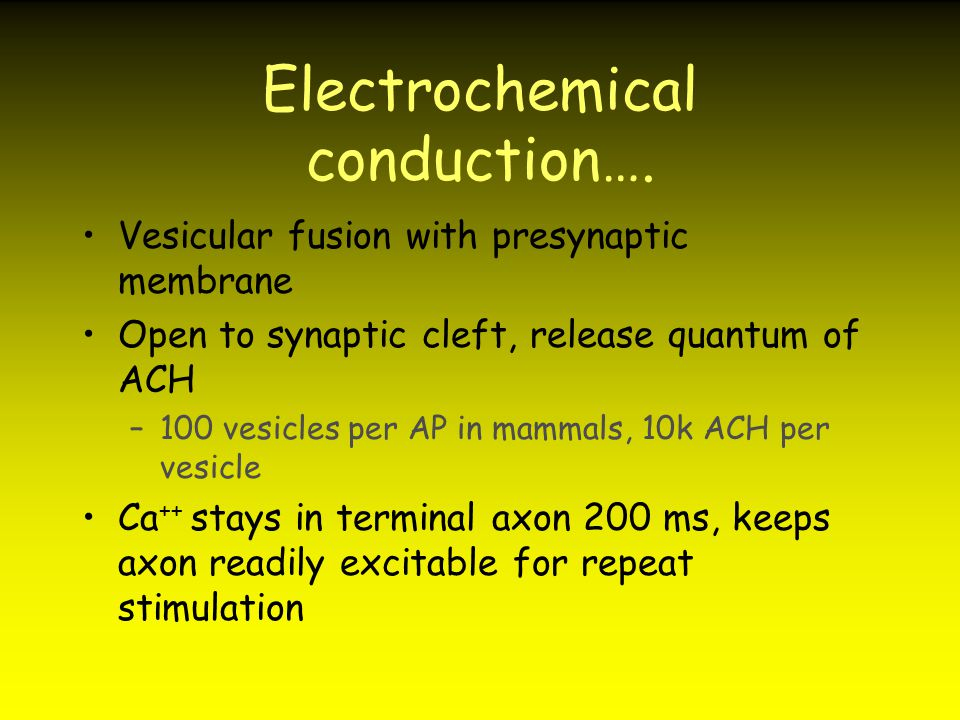 Electrochemical conduction….
